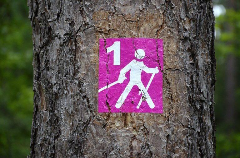 Verinnerlichen und üben Sie alle vier Phasen der Nordic Walking Technik und Sie sind auf dem besten Weg zum Richtig Walken mitStöcken!